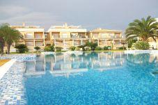Apartamento en Oliva - CASAS DEL MAR - Nº 042(ALQUILER SOLO A...