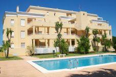 Apartamento en Oliva - HOYO 12 - Nº 18(ALQUILER SOLO A...