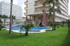 Apartamento en Grao de Gandia - RIOJA SALINAS IV - 1ª - 6º - 10ª...