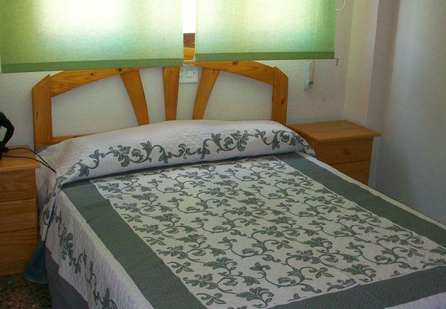 Apartamento en Grao de Gandia - GANDIAZAR II - B- 11º - 22ª , PLAYA DE GANDIA