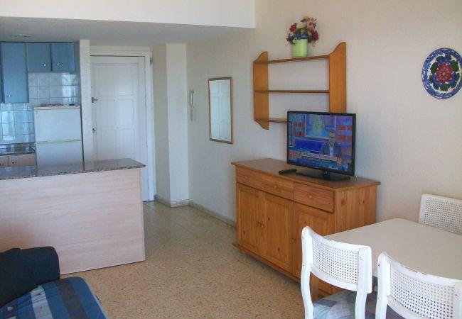 Apartamento en Grao de Gandia - BONAIRE E2 - 10º - VISTAS FRONTALES A LA PLAYA DE