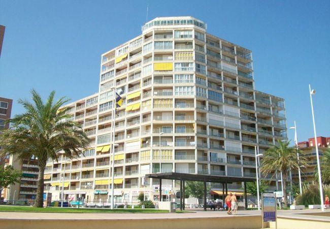 Apartamento en Grao de Gandia - INFANTE E5 - 9º