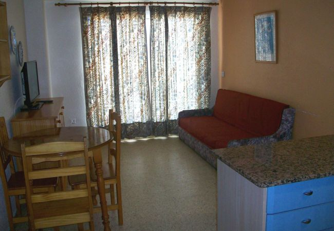 Apartamento en Grao de Gandia - BONAIRE E1 - 8º ( PRIMERA LÍNEA DE PLAYA DE GANDIA