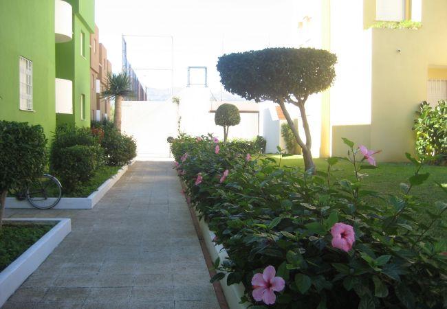 Apartamento en Xeraco Playa - JUNCOS 43 - 2º