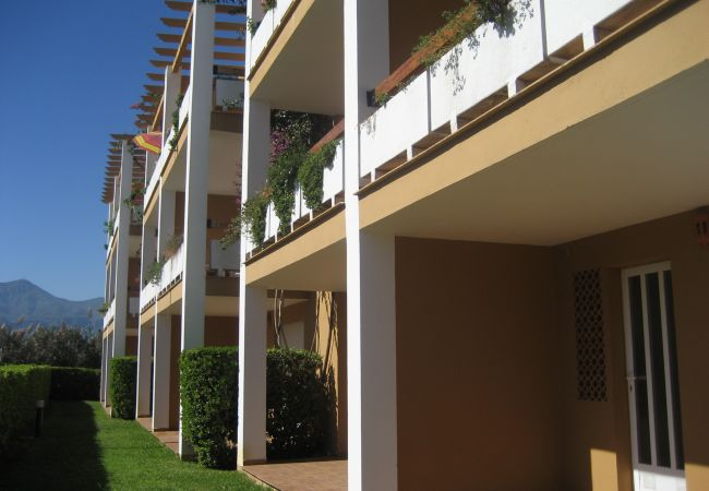 Apartamento en Xeraco Playa - JUNCOS 51 bajo