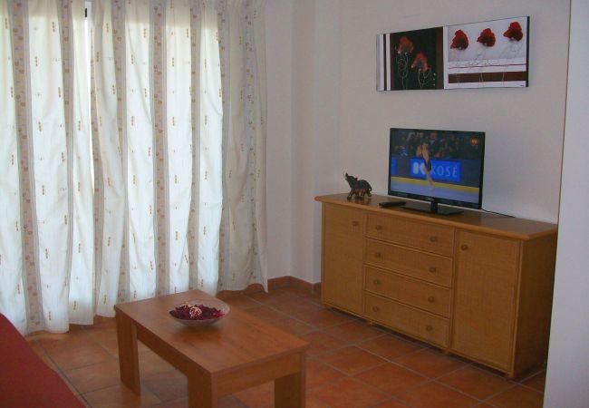 Apartamento en Oliva - HOYO12 - Nº 4 , MUY CERCA DEL CENTRO ECUESTRE OLIV