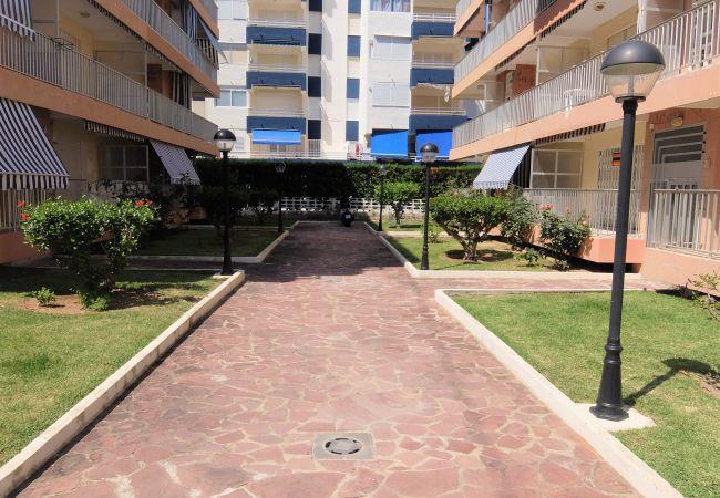 Apartamento en Grao de Gandia - PRINTANIA 4 - 1º - 4ª