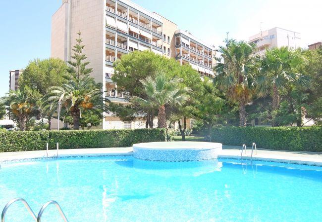 Apartamento en Gandia - TRES DELFINES  4º - I  ( Solo alquiler Familias )