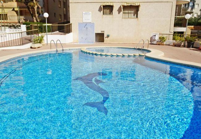 Apartamento en Grao de Gandia - AYALA 4º - 17ª (ALQUILER SOLO A FAMILIAS) SITUADO