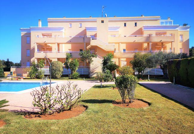 Apartamento en Oliva - HOYO12 - Nº 3 , JUNTO AL CENTRO ECUESTRE OLIVA NOV