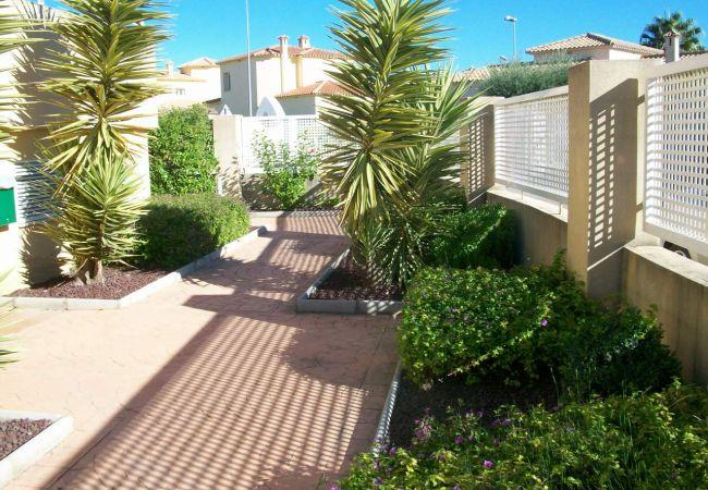 Apartment in Oliva - PAR 3 - Nº 8 (ALQUILER SOLO A FAMILIAS)