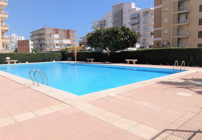 Apartment in Grao de Gandia - CANTABRIA 3º - 36ª (ALQUILER SOLO A FAMILIAS) SITU