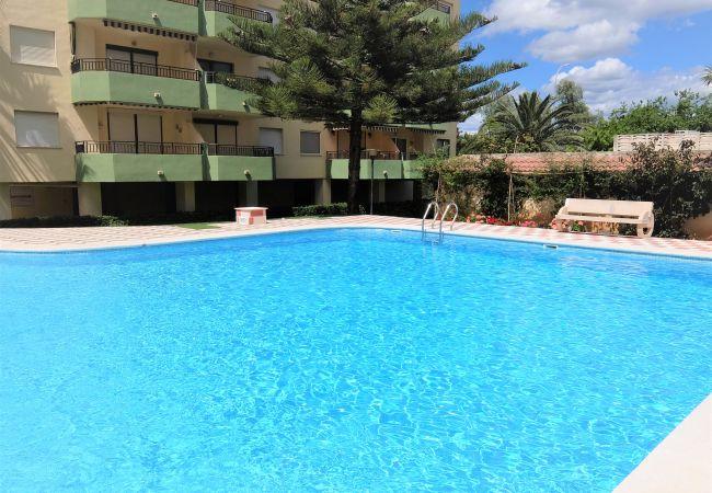 Apartment in Grao de Gandia - GARDENIAS II -B1 - 7º C ( ALQUILER SOLO A FAMILIAS