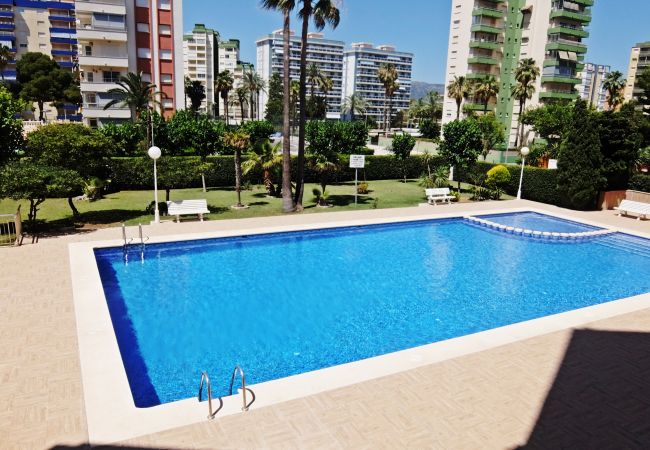 Apartment in Grao de Gandia - DON CHIMO 1º - 1ª (ALQUILER SOLO A FAMILIAS) APTO