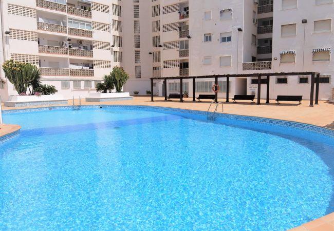 Apartment in Grao de Gandia - BONAIRE E5 - 13º (ALQUILER SOLO A FAMILIAS)