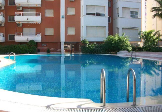 Apartment in Grao de Gandia - LAS ALONDRAS B-1ª - 1º - 1ª (ALQUILER SOLO A FAMIL
