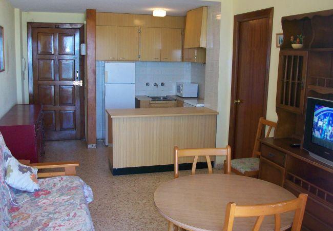 Apartment in Grao de Gandia - INFANTE E1 - 8º (ALQUILER SOLO A FAMILIAS)