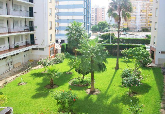 Apartment in Grao de Gandia - DELFIN 1º - 6ª (ALQUILER SOLO A FAMILIAS) SITUADO
