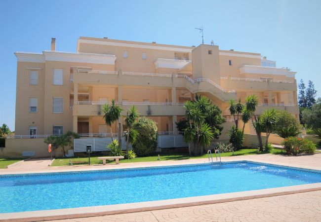 Apartment in Oliva - HOYO 12 - Nº 18(ALQUILER SOLO A FAMILIAS)